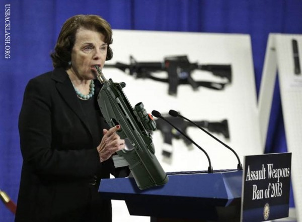 Jackasses Feinstein & Obama Take Aim at Our Gun Rights